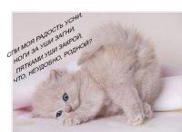 Наталья Баринова, 21 октября 1988, Нижний Новгород, id32599525